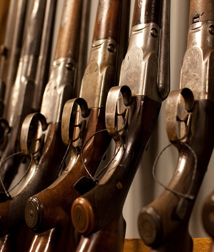 A row of shotguns within the GunTech studio.